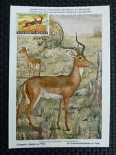 Rwanda MK 1959 Animals Antilope maximum Carte CARTE MAXIMUM CARD MC cm a8900