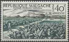 Timbre Flore Madagascar PA79 ** lot 25075