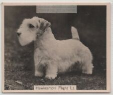 Sealyham Terrier 1930s Champion  Dog Breed Canine Pet Ad Trade Card