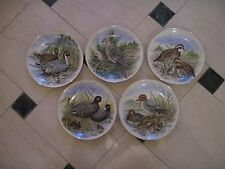 Collector Plates 'Game Birds of the South'