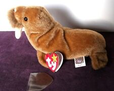 Ty Beanie Babies-Paul The Walrus In Mint Condition-1999 P.E. Retired- Plush