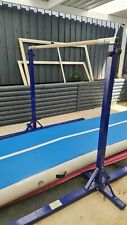 Good condition Gymnastics High Bar