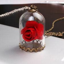 Movie Beauty and The Beast Necklace Dry Rose Flower Bottle Pendant Women Jewelry