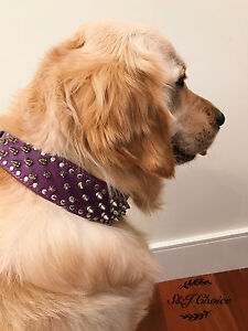 Dog Collar Studded Purple PUFaux Leather Spiked Pet M L XL Wide Spiked