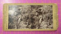 Antique Stereoscope Photograph: Stereoscopic Gems of American & Foreign Scenery