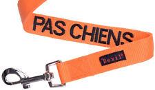 Articles orange en nylon pour chien