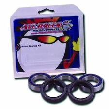 BMW S1000RR Rear Wheel Bearings & Seals Kit By AllBalls Racing USA