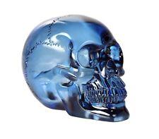 Blue Translucent Skull.Clear Crystal Like Human Head Bust Statue Figurine
