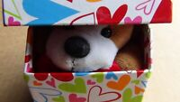"""Dan Dee Hug Me Puppy Collector""""s Choice in 4"""" Cube Box, FREE FAST SHIPPING!"""
