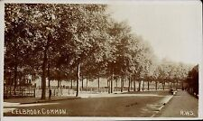 Fulham. Eel Brook Common by RWS.