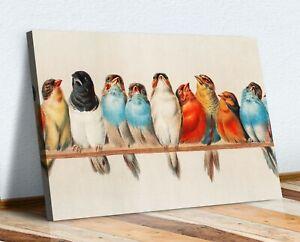 VINTAGE BIRDS ON A PERCH CANVAS WALL ART PRINT ARTWORK HOME DECOR DEEP FRAMED