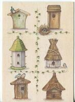 VINTAGE BIRD HOUSE MENAGERIE EGGS NATURE ART LITHOGRAPH PRINT ON GREETING CARD