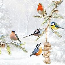 20 Tovaglioli, tovaglioli tecnologia all together uccelli atmosfera 33 x 33