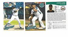 COMPLETE 2017 BRIDGEPORT BLUEFISH TEAM SET MINOR LGE - ATLANTIC LEAGUE