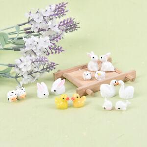 10 Stück Mini Animals Home Fairy Garden Figuren Miniaturen Home Garden DecoraBOD