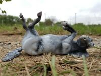 "Custom Breyer Horse OOAK by Kent ""Thunder"" Traditional Black Varnish Appy Pony"