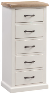 Painted Pine 5 drawer Tall Chest