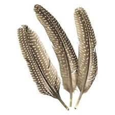 Knorr Prandell 15-20cm Pheasant Feathers - 8pcs #6617980