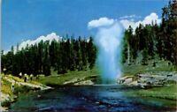 Vintage Postcard Riverside Geyser Yellowstone National Park Unposted