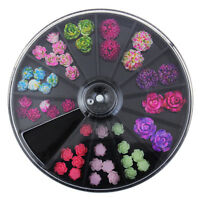12 Colors 3D Rose Flowers Manicure Decoration Design DIY Nail Art Tips Gel Wheel