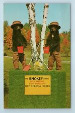 Vintage Postcard Smokey Bear Twins Game Haven Wolverine Michigan MI Taxidermy