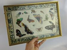 Chinese Antique Rice Paper Painting Butterflies & Insects Silk Border Pith Qing