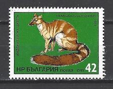 Bulgarie 1985 (3) Yvert n° 2896 oblitéré used