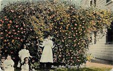 c1910 Printed Postcard; Children & Rose Arbor, Willows CA Glenn County Unposted