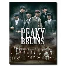 Boston Bruins Peaky 12x16/24x32inch Silk Poster Wall Decoration Hot