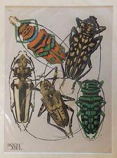 Seguy Série des insectes Planche 4 - 1929