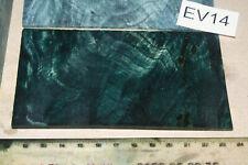 1 Platte Plate Pappel Maser petrol stabilisiert 124x70x3mm puq EV14
