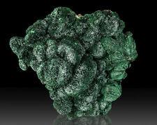 "2.6"" Dark Green FIBROUS MALACHITE Acicular Botryoidal Crystals Congo for sale"