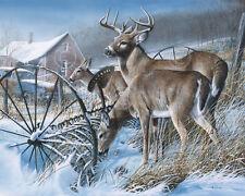 WILDLIFE ART PRINT - Snow Drifters by Kevin Daniel Deer Buck Poster 19x13