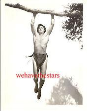 Vintage Johnny Weissmuller BEEFCAKE TARZAN '39 Publicity Portrait