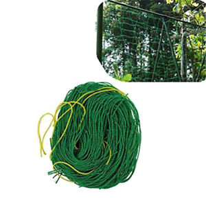 1.8x1.8m Garden Green Nylon Trellis Netting Support Climbing Plant Nets  LD