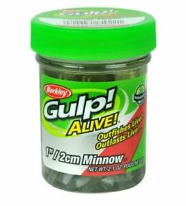 "Berkley Gulp Alive 1"" Minnows, Emerald Shiner, 2.1 oz Jar, GAJMI1-ES, New, 1559"