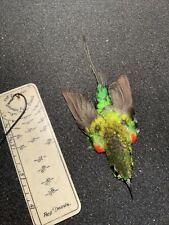 Sunbird Taxidermy Bird Skin Feathers Salmon Fly