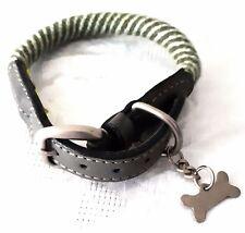 Un collier vert à rayures pour chien de diamètre de cou maximum de 40 cm
