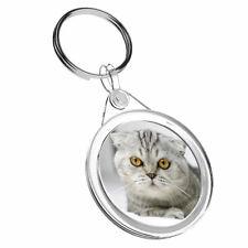 1 x SCOTTISH FOLD CAT Kitten-Porte-clés IR02 Maman Papa Enfants Anniversaire Cadeau #3644