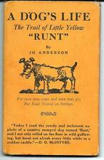 """A Dog's Life, The Trail of Little Yellow """"Runt"""" by Jo Anderson"""