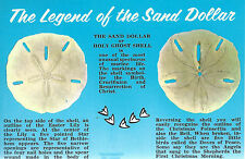 The Legend of The Sand Dollar or Holy Ghost Shell      Unused  Postcard