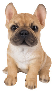 Vivid Arts Pet Pals - Golden French Bulldog - Resin Home & Garden Ornament