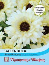 Thompson & Morgan - Flower - Calendula Snow Princess - 50 Seeds