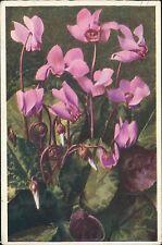 Mrs  Mogg. 40 The Grove, Slough, Bucks 1943  Flowers / Grapes (JC.432)
