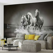 White horses WALLPAPER huge photo mural BLACK & WHITE KIDS ROOM wild animals