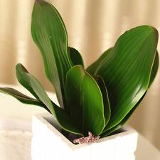 Verdadero toque Orquídea de mariposa Hojas X 4-Plantas Artificiales