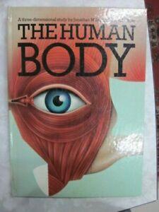 The Human Body: 3-d Pop Up Book Jonathan Miller David Pelham hc 1983 D17