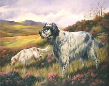 More details for english setter ltd.edition print by robert j. may
