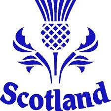Scottish Thistle Scotland Vinyl Car Decal Sticker window bumper graphic 15x15cm