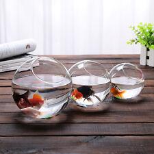 Round Glass Ball Bowl Vase Terrarium Succulents Planter Fish Tank Landscape Home